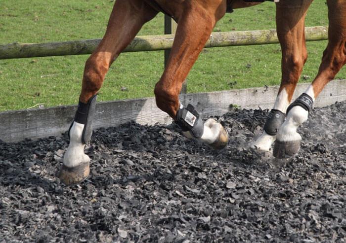 AMG Landservices Equestrian